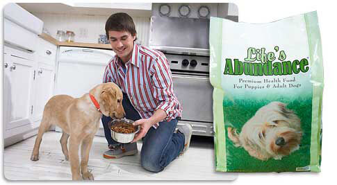 Man feeding dog Life's Abundance