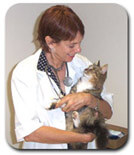 Listen to holistic veterinarian Dr. Jane Bicks D.V.M., Do You Really Know What's In Your Pet's Food?