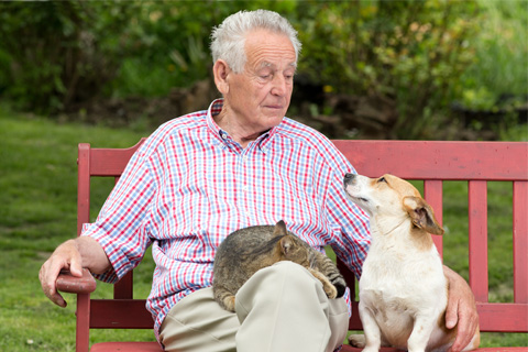 senior citizen with senior pets