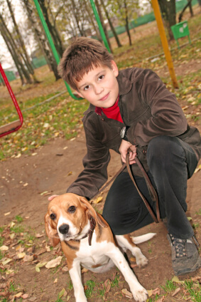 Boy and Beagle